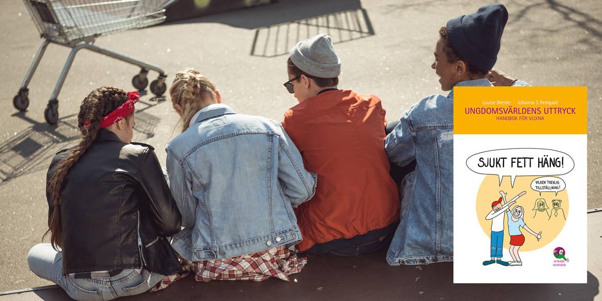 Ungdomsvärldens uttryck – handbok för vuxna